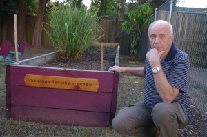 Boronia Community Garden Update-1