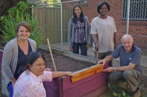 Boronia Community Garden Update-3